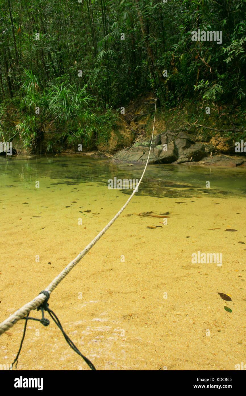 rope bridge at tropical rainforest, Chemerong Berembun Langsir, CBL, malaysia - Stock Image