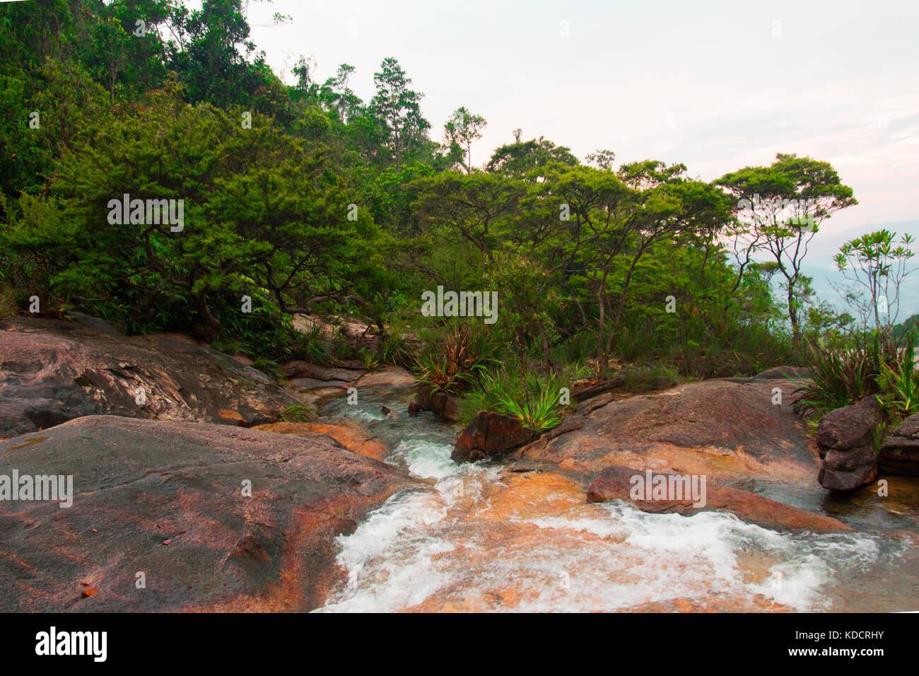 Flowing water around ropical rainforest, Chemerong Berembun Langsir, CBL, malaysia - Stock Image