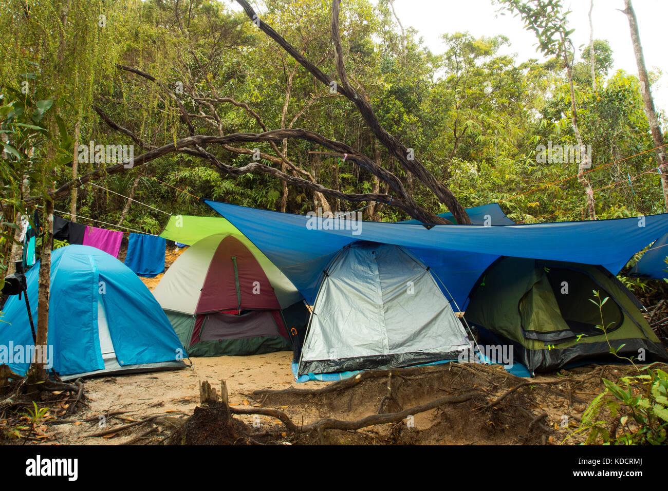 camping in the rainforest, chemerong berembun langsir, CBL, malaysia - Stock Image
