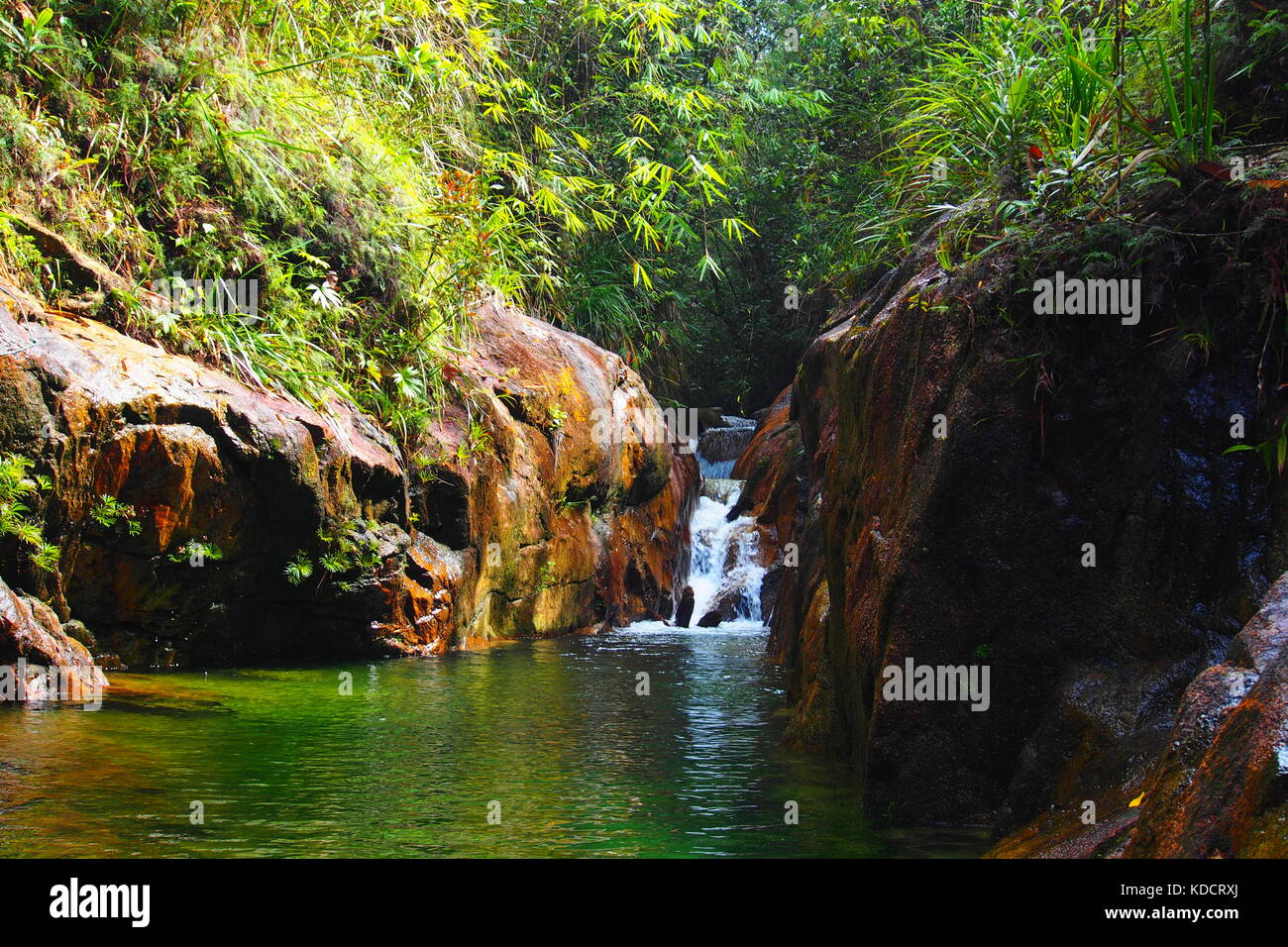 Small falls in tropical rainforest, Chemerong Berembun Langsir, CBL, malaysia - Stock Image