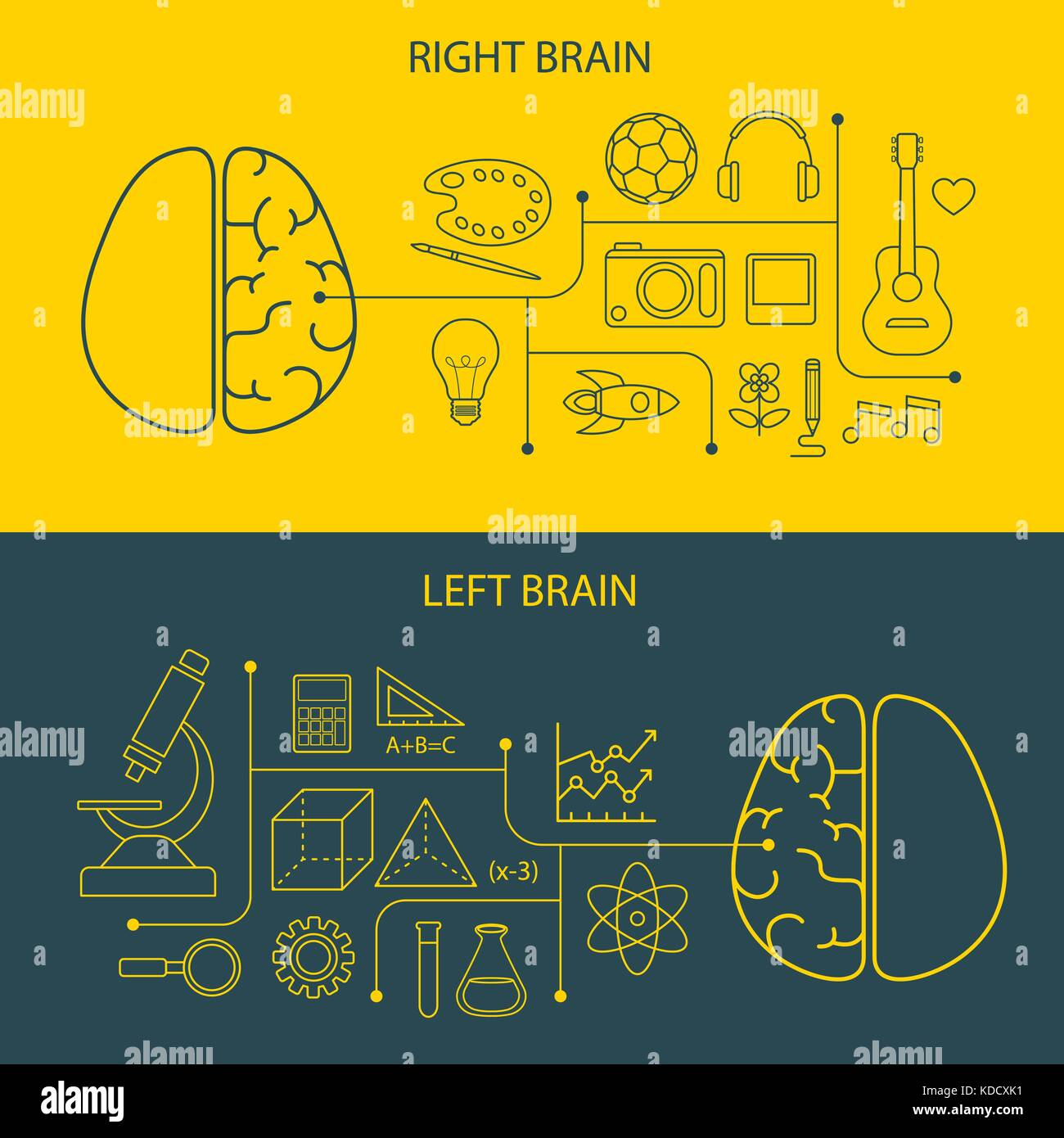 left and right brain functions concept - Stock Image