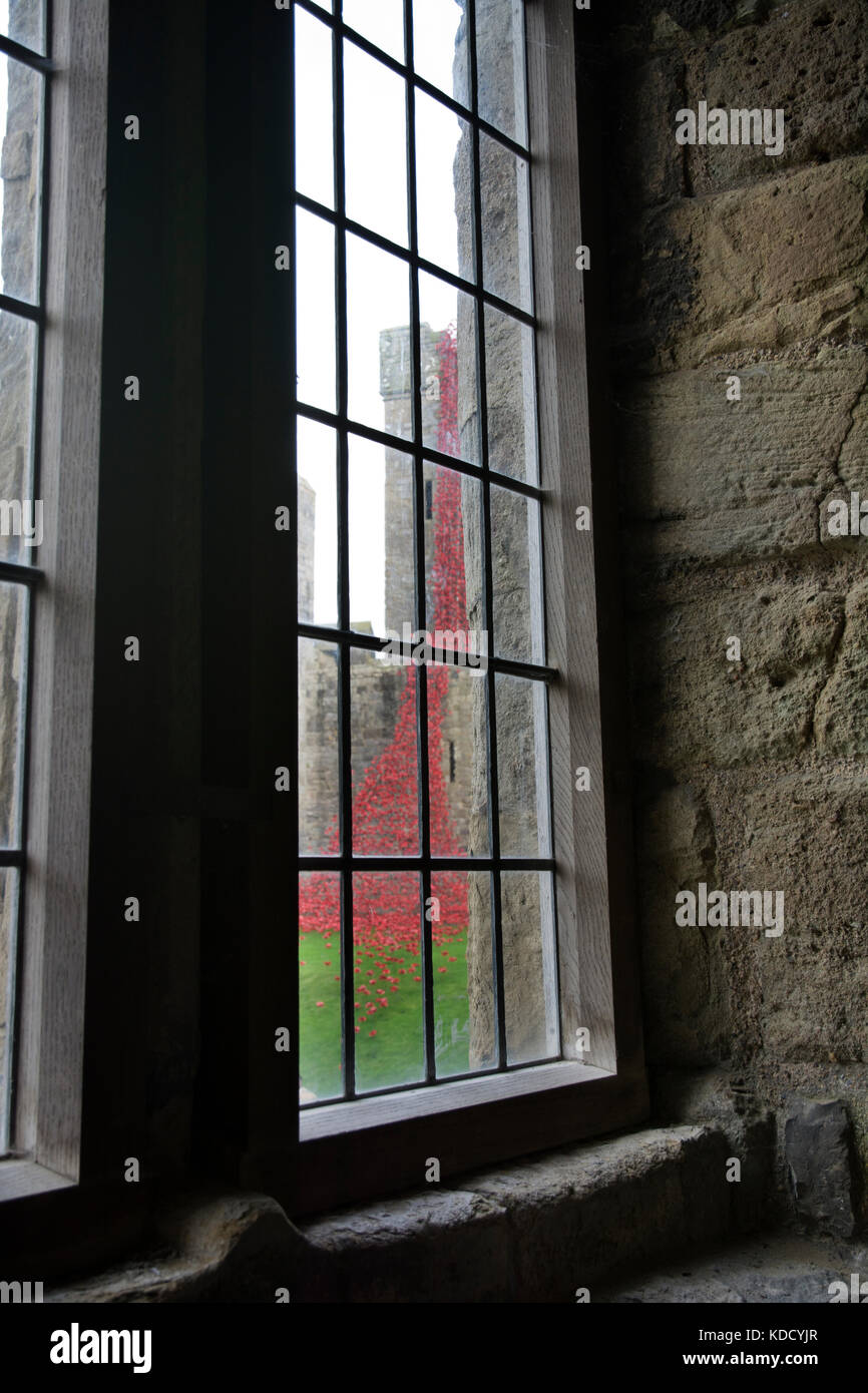 Weeping Window Poppy Sculpture by Paul Cummins and Tom Piper at Caernarfon Castle 2016 viewed from the castle interior - Stock Image