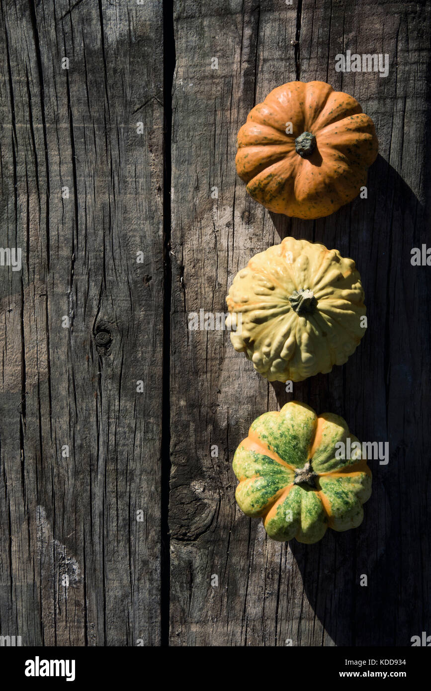high-angle shot of an assortment of different pumpkins on a rustic wooden table with a blank space on the left - Stock Image