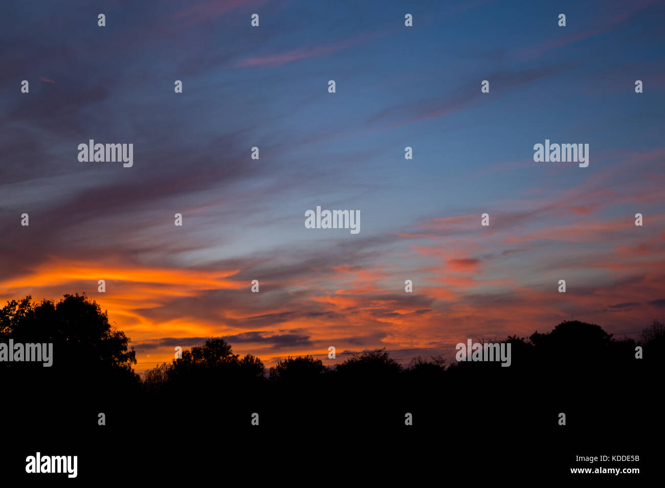 Autumn evening Sunset seen over Framingham Suffolk England UK with wispy sparse pink and golden orange wispy high - Stock Image