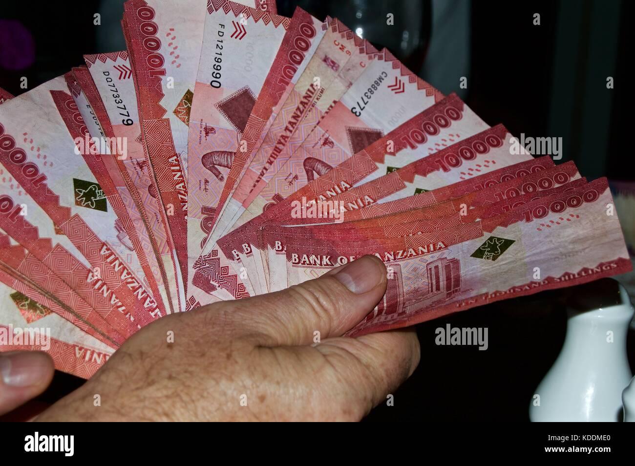 Tanzanian shillings - Stock Image