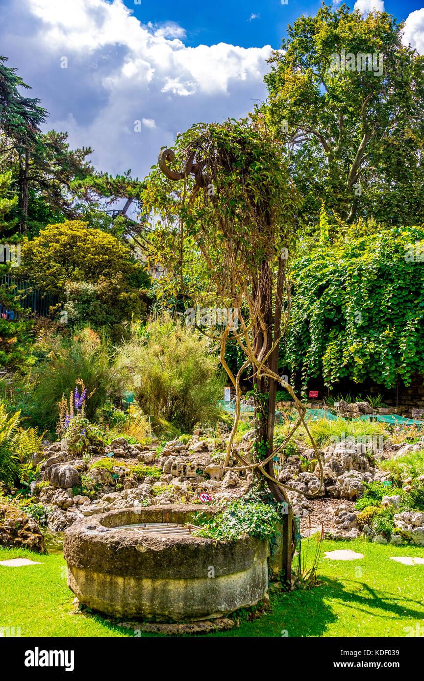 The hidden Alpine Garden in the Jardin des plantes in Paris, France Stock Photo