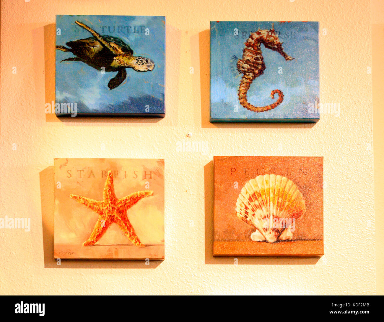 Handpainted Sealife wall plaques, a perfect home decor gift on sale ...