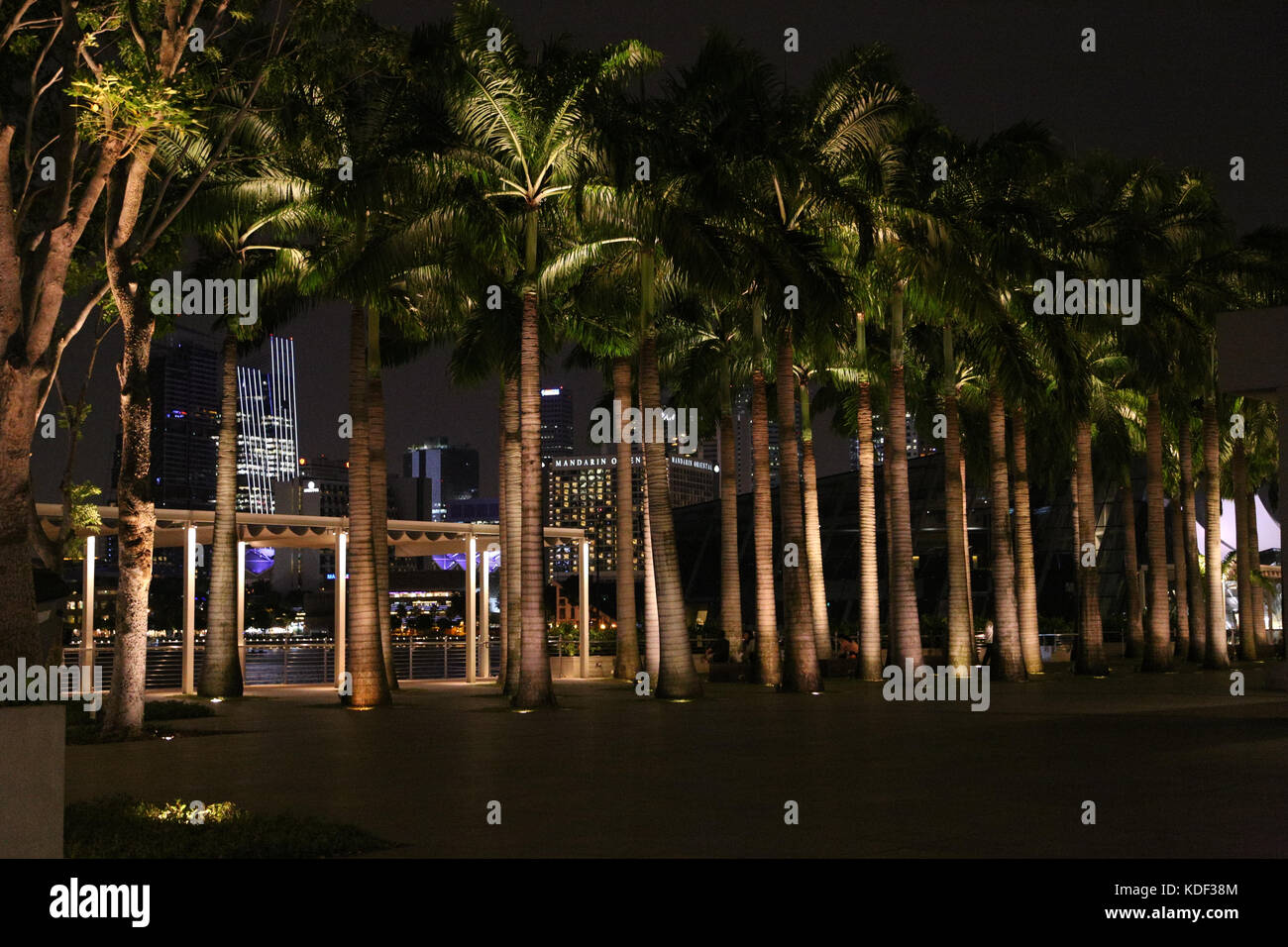 Palm Trees in Marina Bay Sands, Singapore - Stock Image