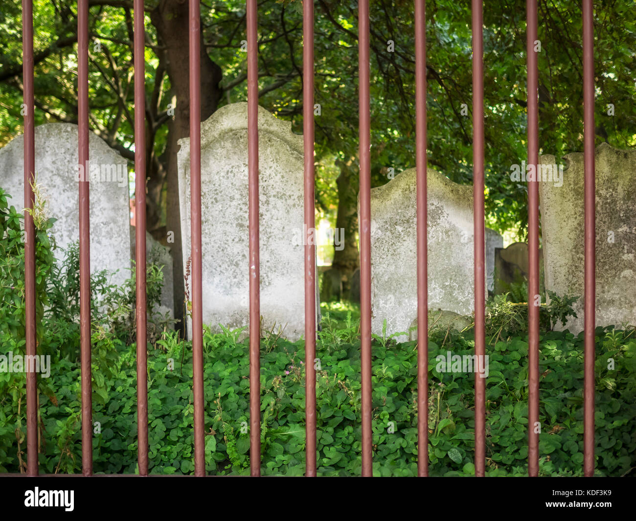 BUNHILL FIELDS BURIAL GROUND, LONDON, UK:  Gravestones seen through therailing fence which forms the boundary of - Stock Image