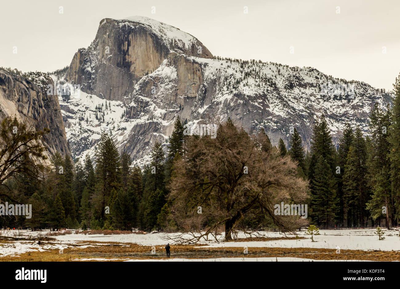 Half Dome, Yosemite National Park, California, America Stock Photo