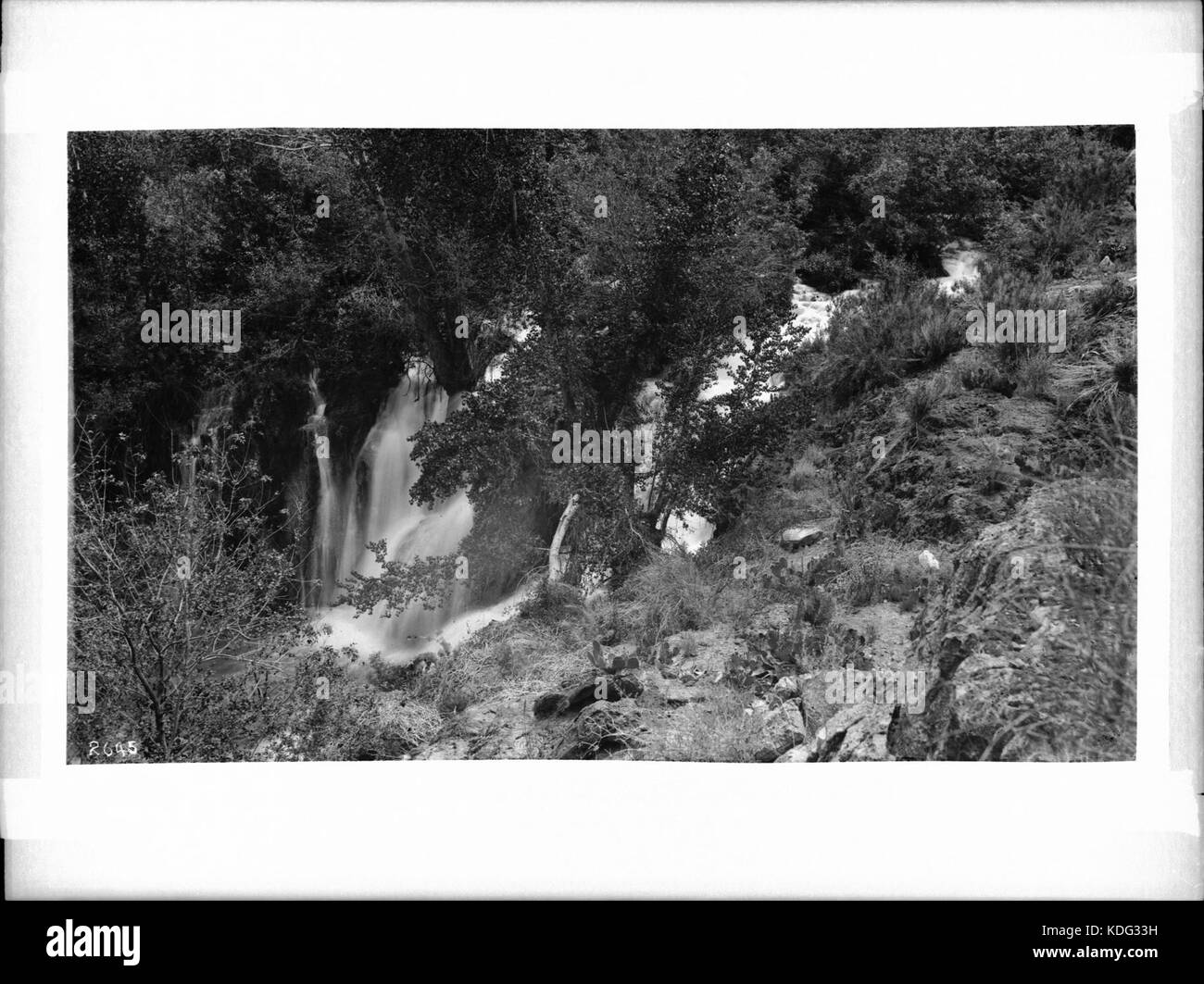 Navajo Falls in Cataract (Havasu) Canyon, Arizona (CHS 2645)
