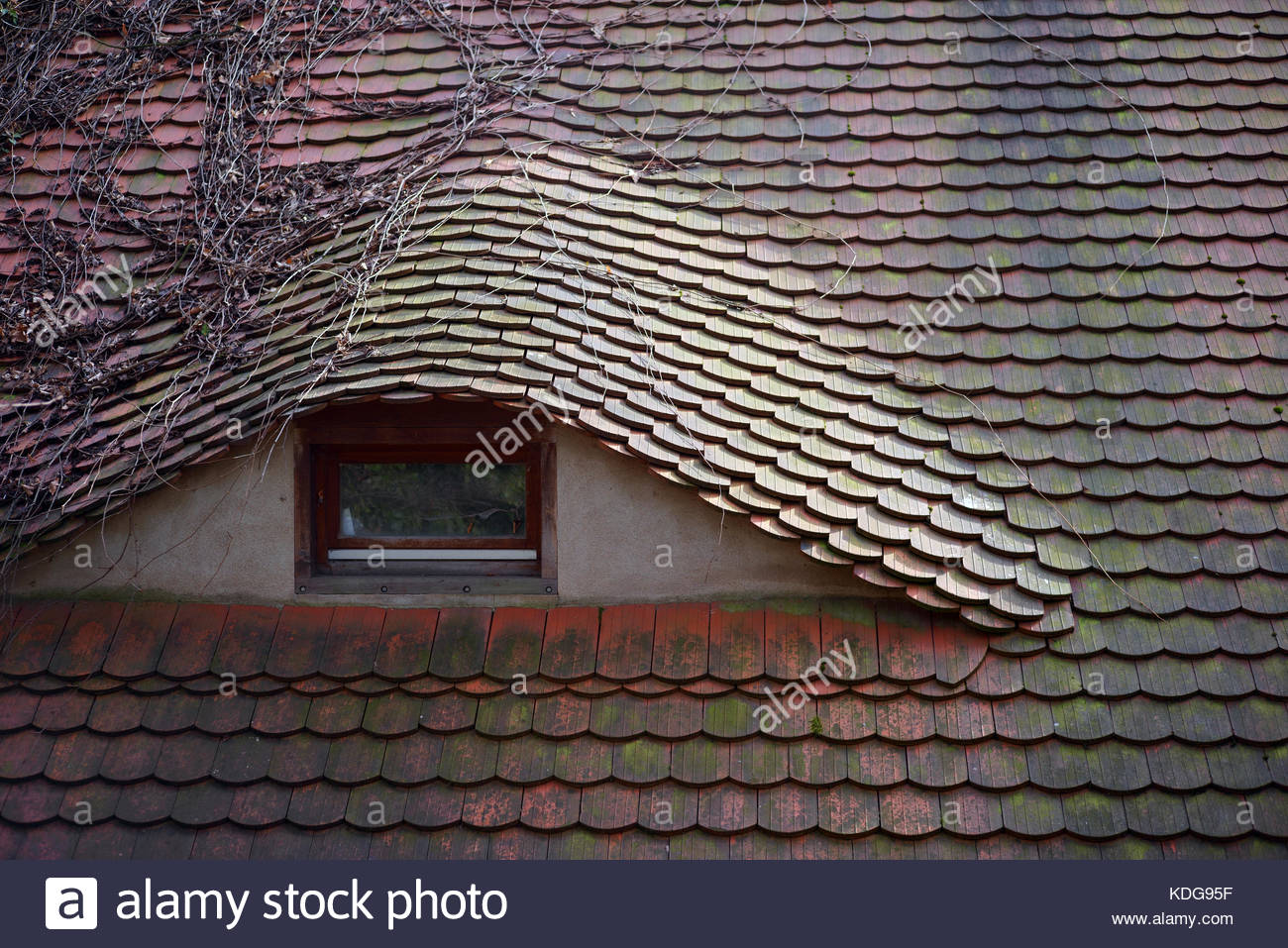Old Slate Roof Tiles Rounded Stock Photos Amp Old Slate Roof