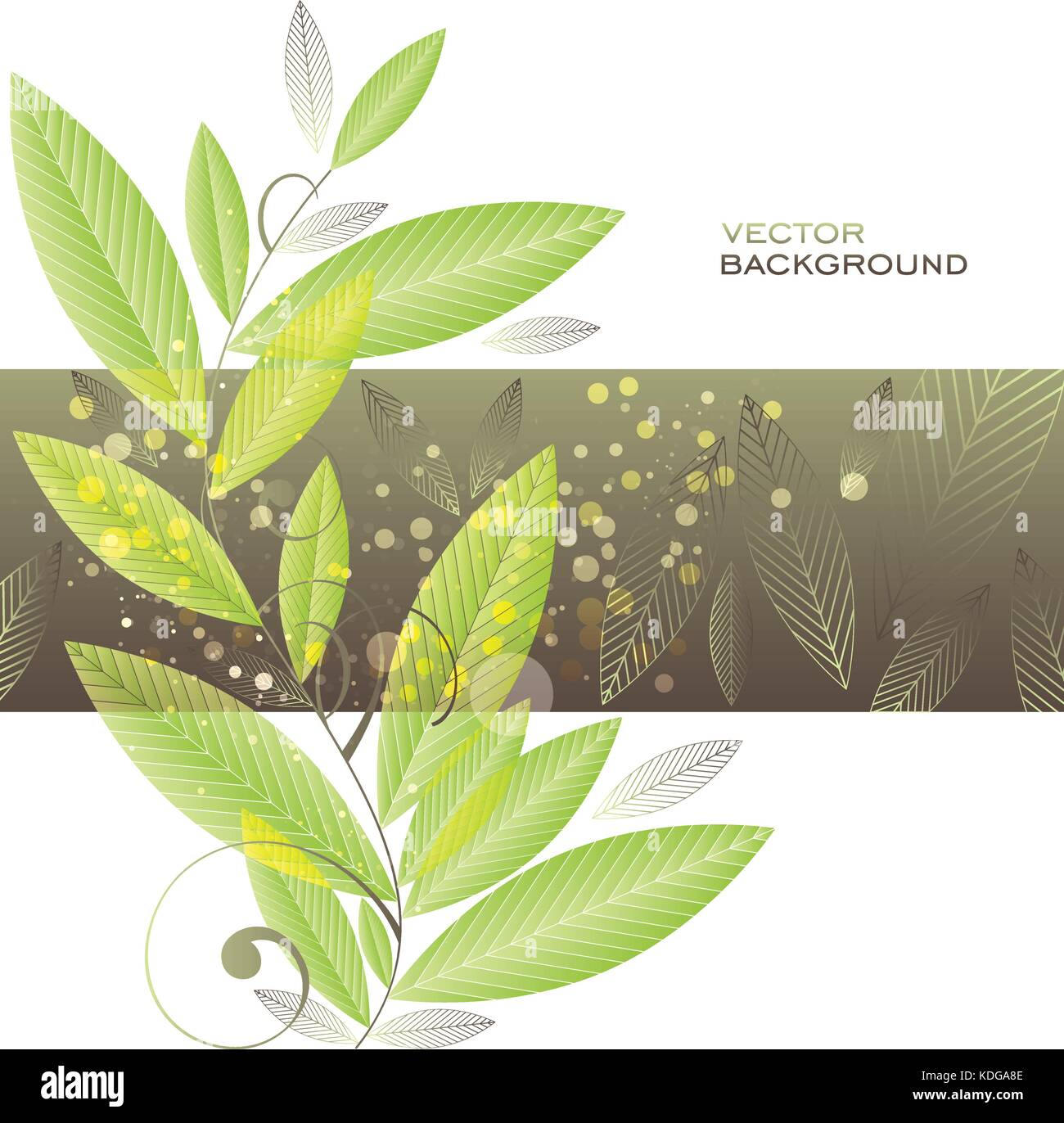 Leaves background, vector template, green and brown on white background - Stock Vector