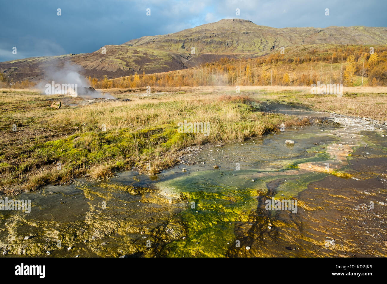 The Geysir area in Haukadalur Iceland shot in autumn, steam coming up of the ground with coloroful mineral deposits - Stock Image