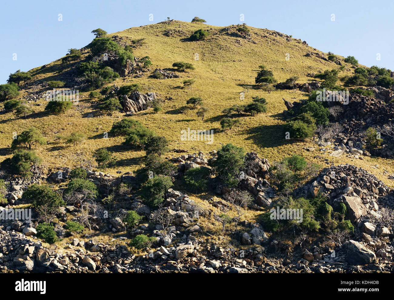Green vegetation mountain landscape at the coastline of Labuan Bajo Bajawa, Indonesia. - Stock Image