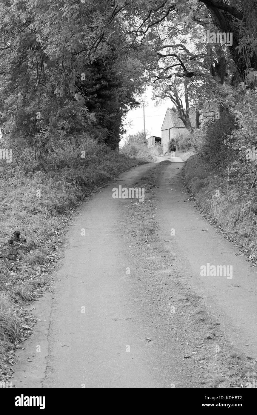 Around Middledown Lane, Marshfield, South Gloucestershire england UK - Stock Image