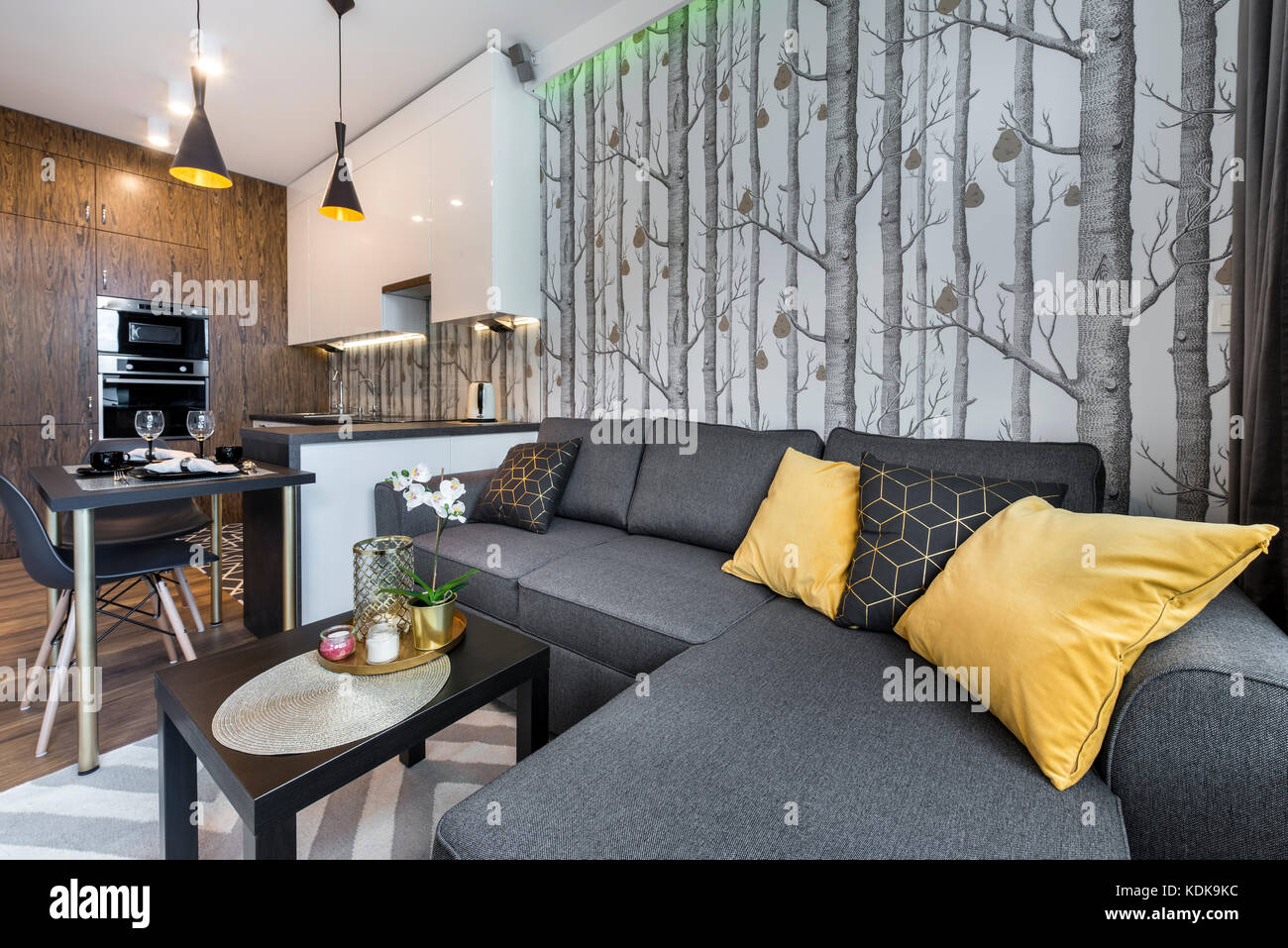 Modern Interior Design Small Apartment With Open Space Kitchen Stock Photo Alamy