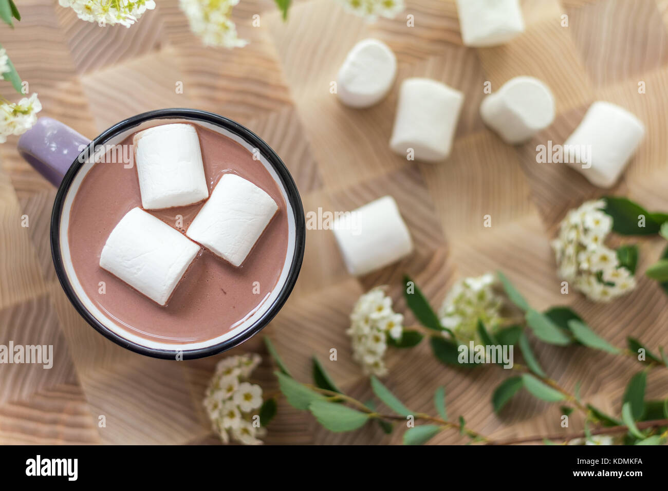 White marshmallows on top of hot cocoa in pink cup.  Fresh white spring flowers and more marshmallows are scattered - Stock Image