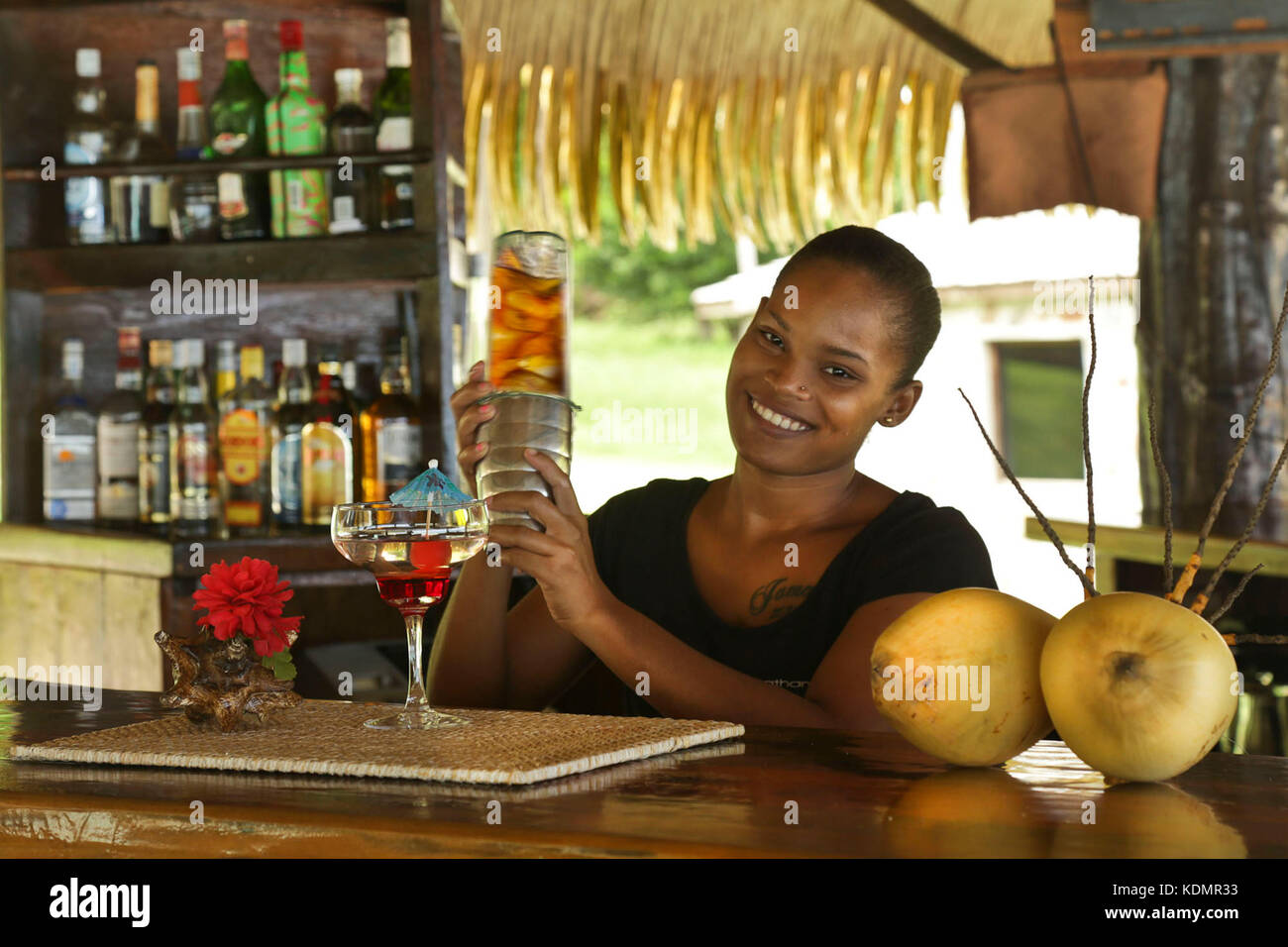 Tropical Bartender Shaking Cocktail, Caribbean Stock Photo