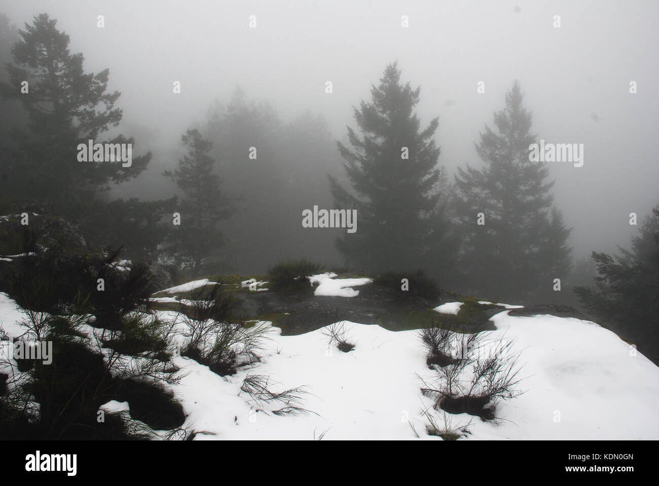 Mist shrouds Mt. Manuel Quimper on Southern Vancouver Island, Canada - Stock Image