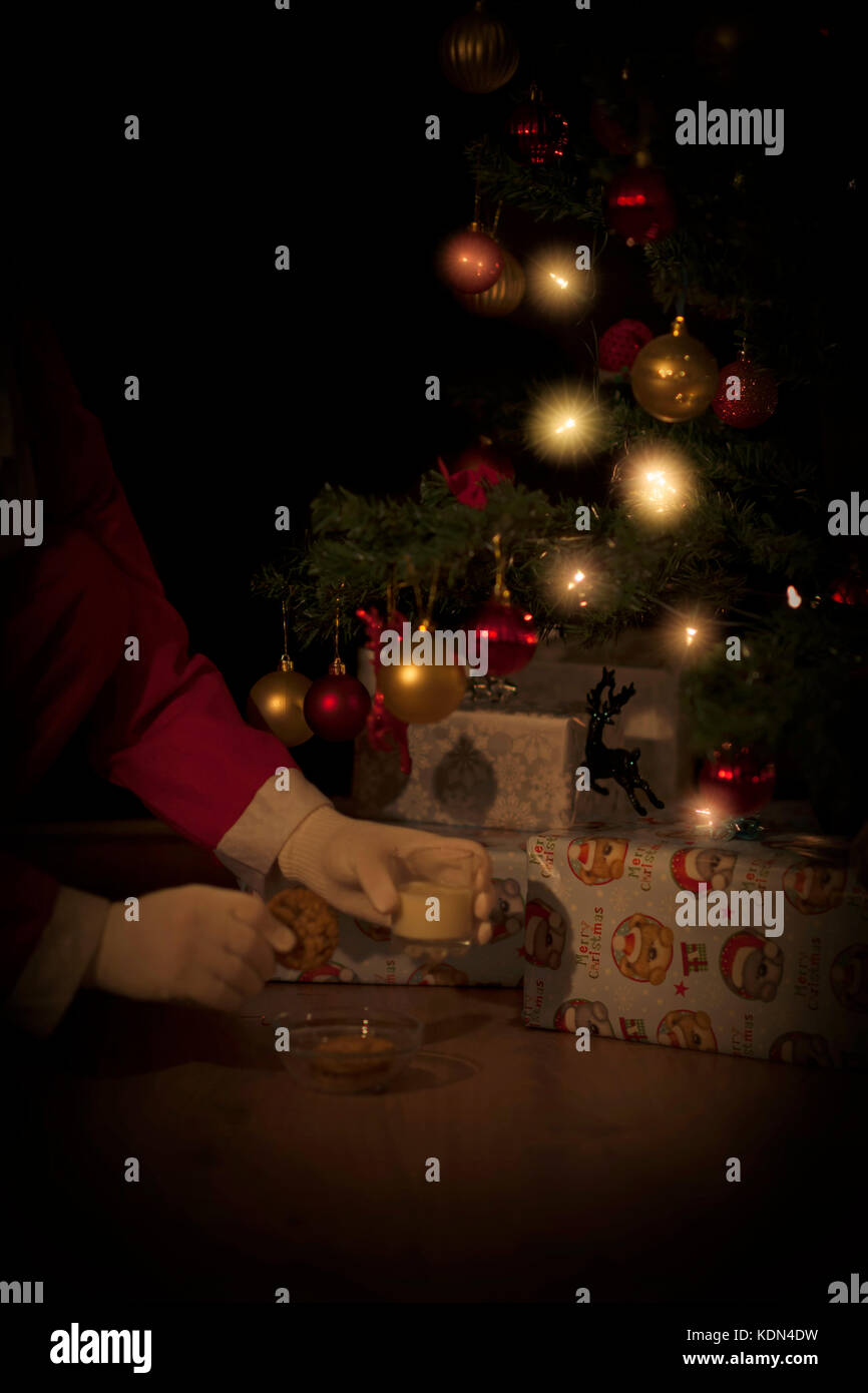 Santa takes cookies and glass of milk left under the Christmas tree Stock Photo