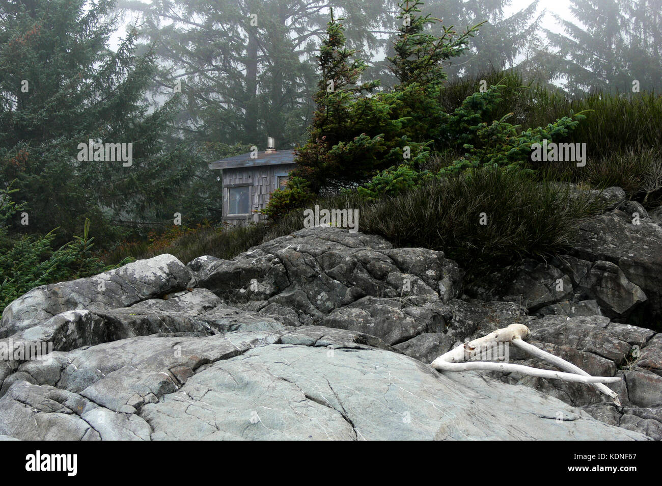 Cabin in the Mist - Sooke, BC, Canada - Stock Image
