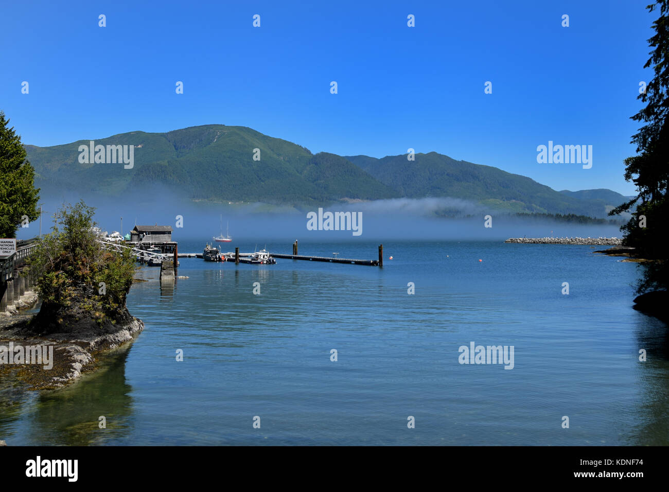 Mist hangs over Port Renfrew's harbor on Vancouver Island, BC, Canada - Stock Image