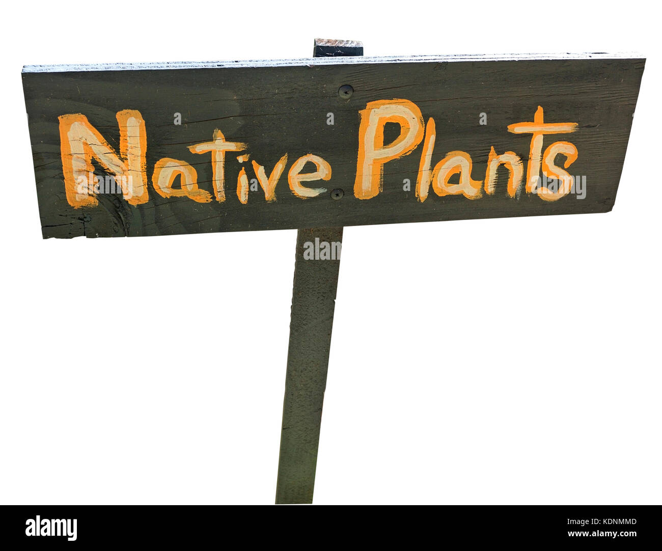 Isolated hand painted NATIVE PLANTS sign. - Stock Image