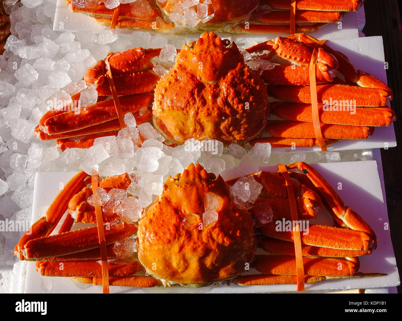 Crabs with ice for sale at Asaichi Market. Hakodate Asaichi (Morning Market) boasts approximately 250 stores offering - Stock Image