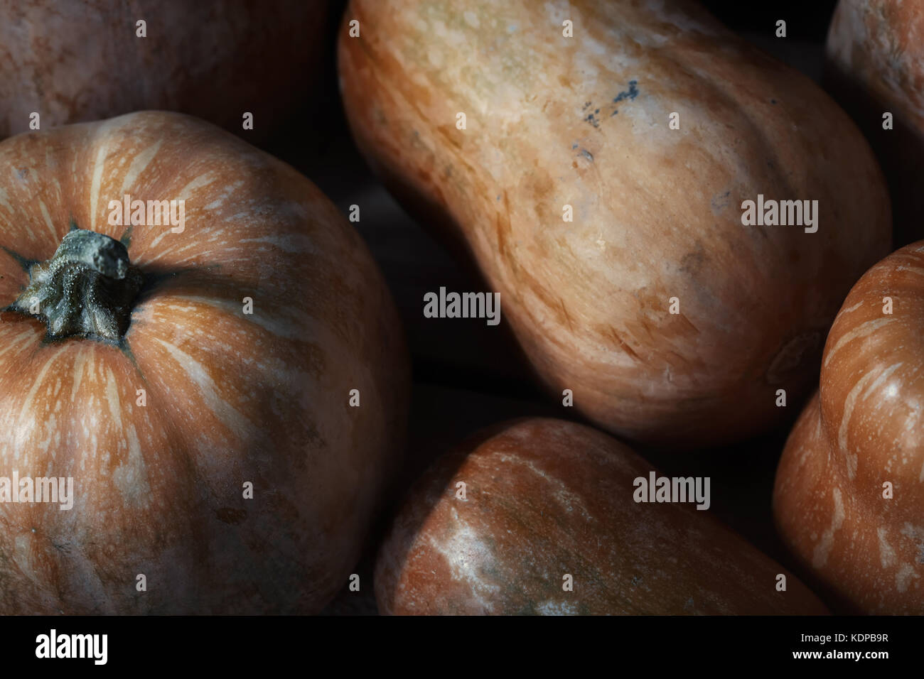 Stack of pumpkins on a wooden table. Close-up Stock Photo
