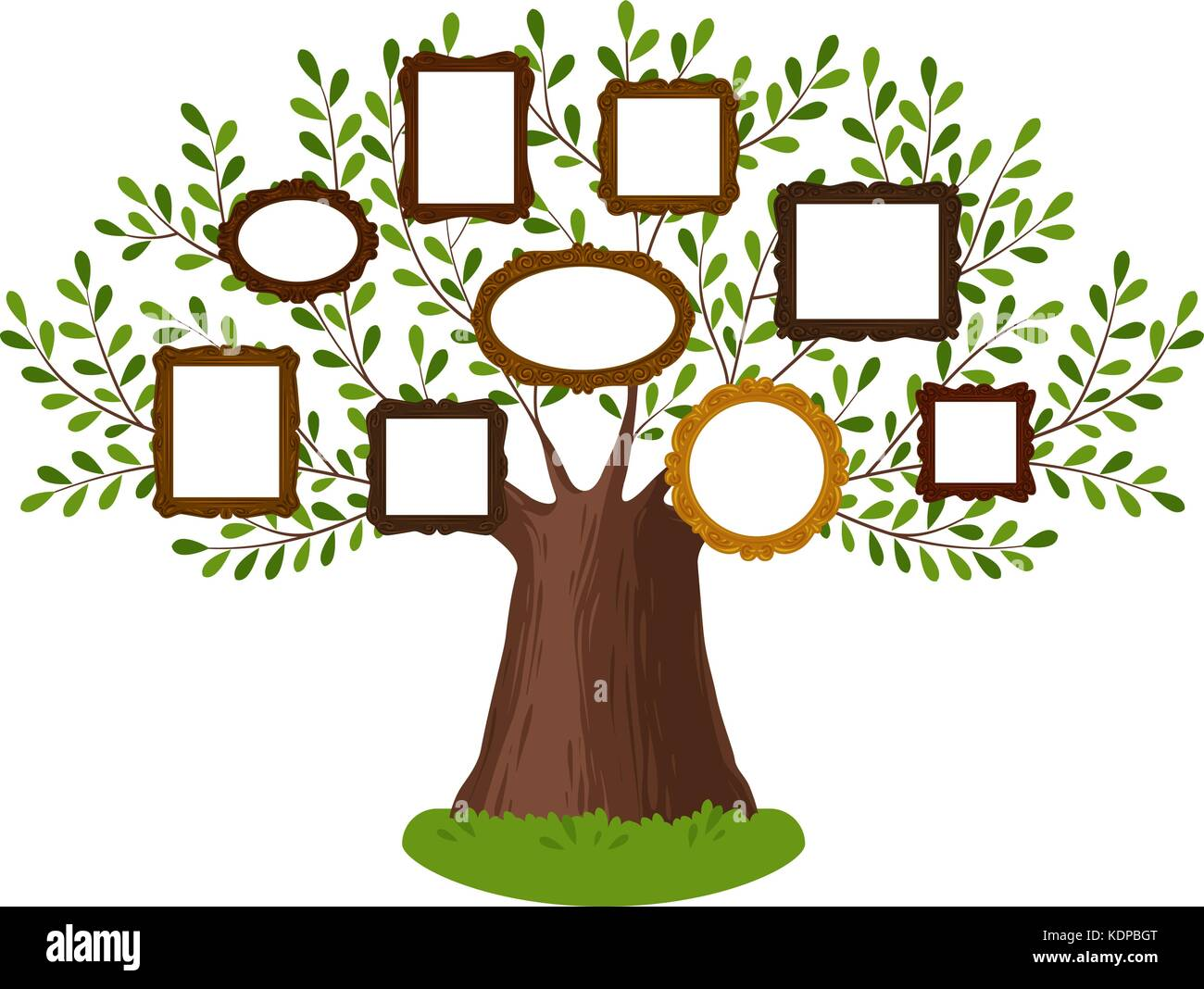 Genealogical family tree with picture frames. Pedigree, genealogy, lineage, dynasty concept. Vector illustration - Stock Image