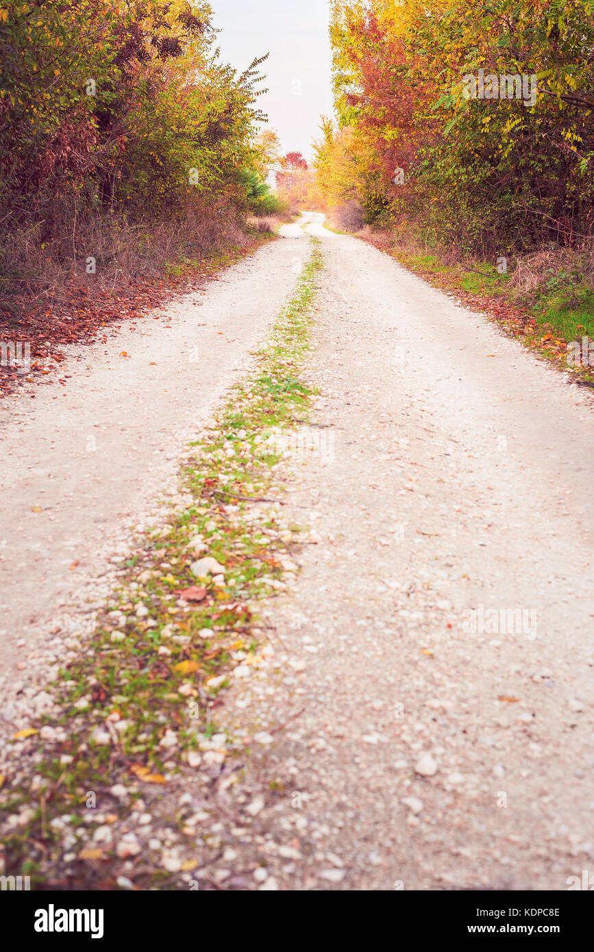 Unpaved colorful country road in autumn - Stock Image