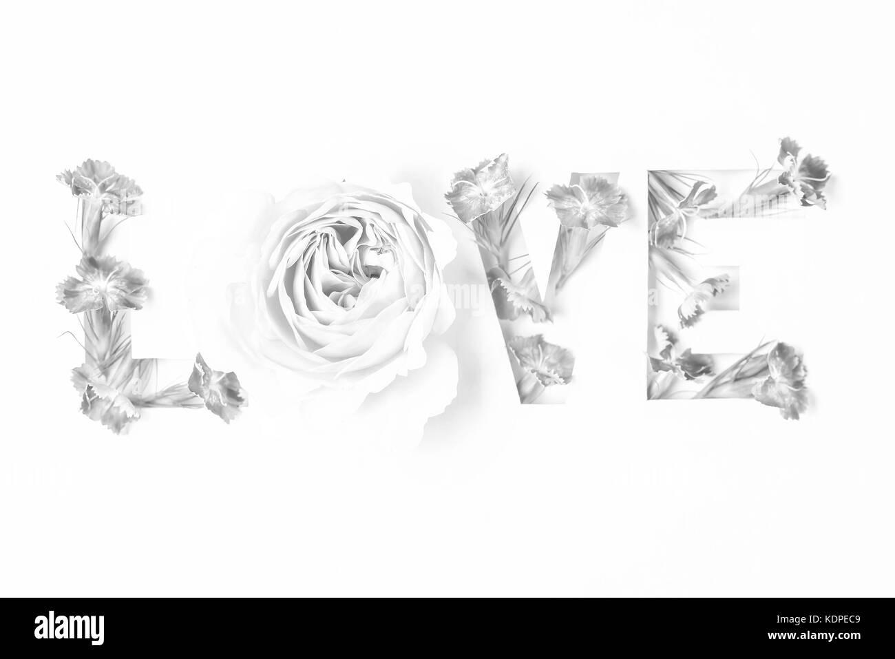 Love Inscription With Pink Flowers Stock Photo 163378105 Alamy