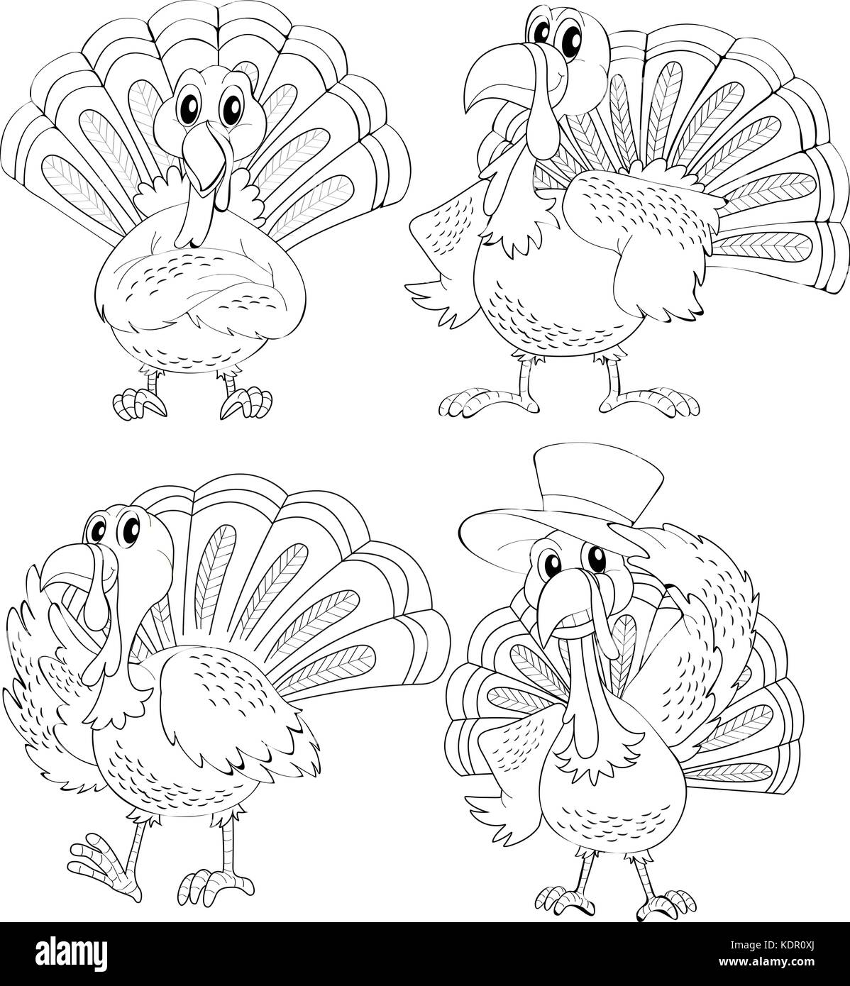 Doodle animal outline of turkey in four actions illustration Stock Vector