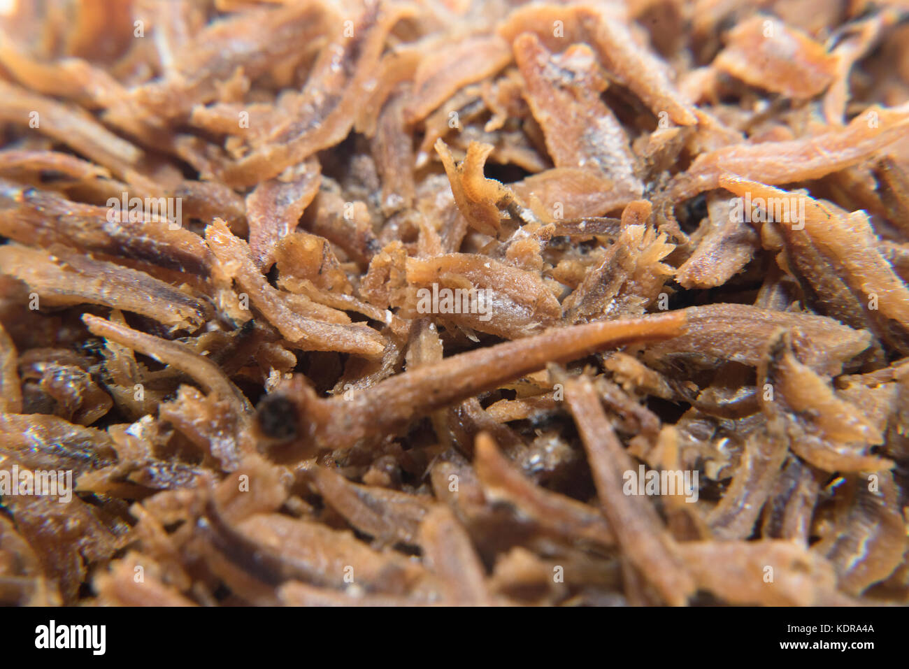 close up of fried anchovies for background - Stock Image