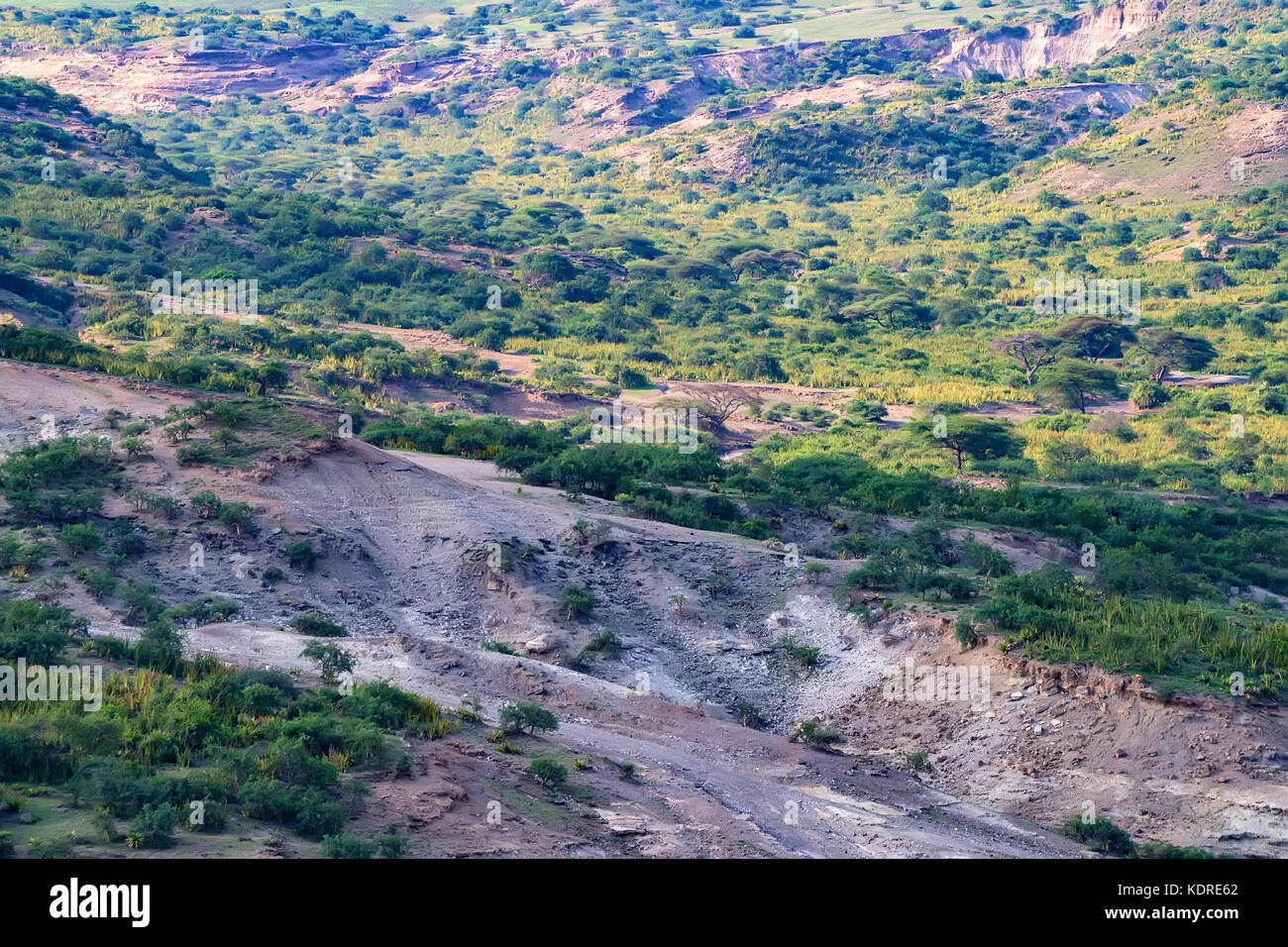 Scenic view of Olduvai Gorge - Stock Image
