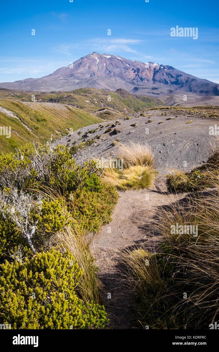 A view of Mount Ruapehu, Tongariro National Park, New Zealand - Stock Image