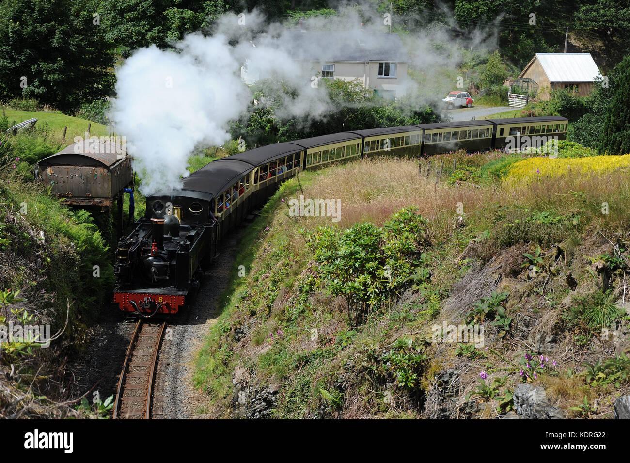 No. 8 'Llewellyn' approaching Devil's Bridge Station. Vale of Rheidol Railway. - Stock Image