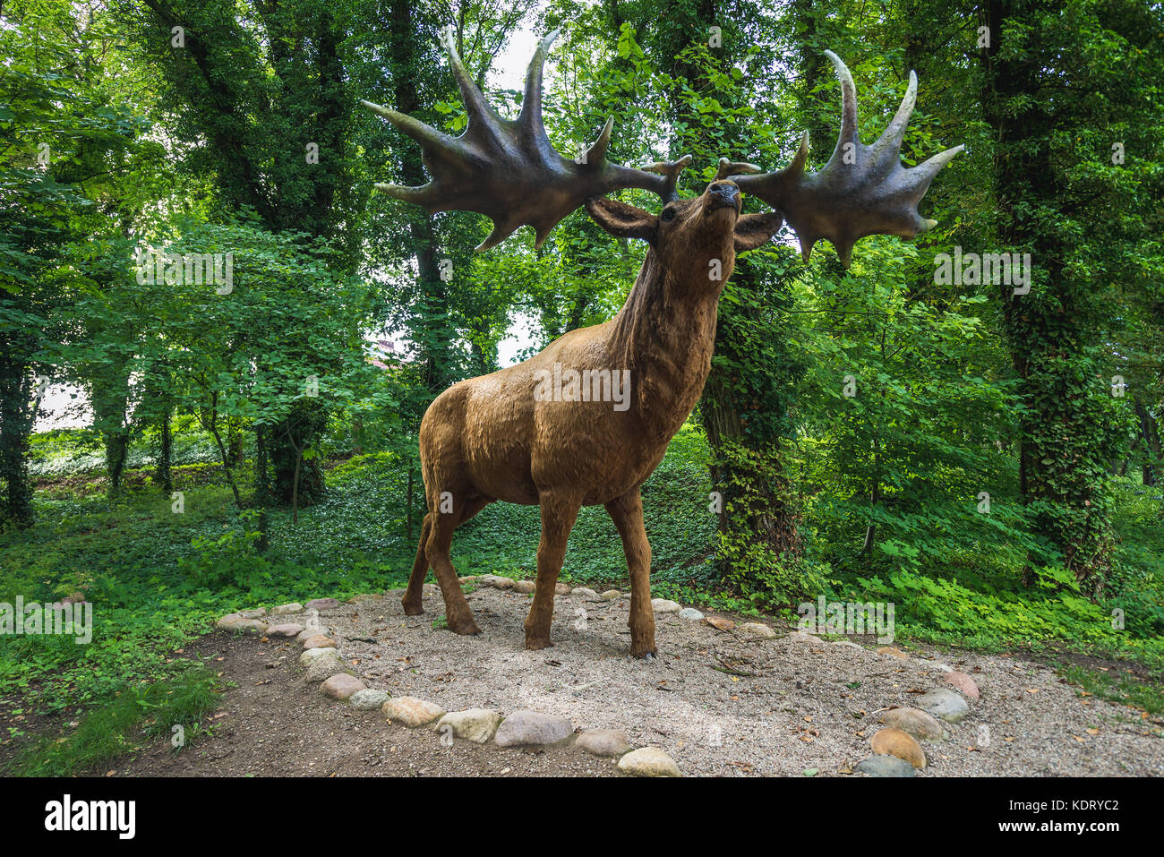 Model of extinct specie Megaloceros giganteus - Irish elk or Giant deer in geopark called 'Avenue of Pleistocene - Stock Image