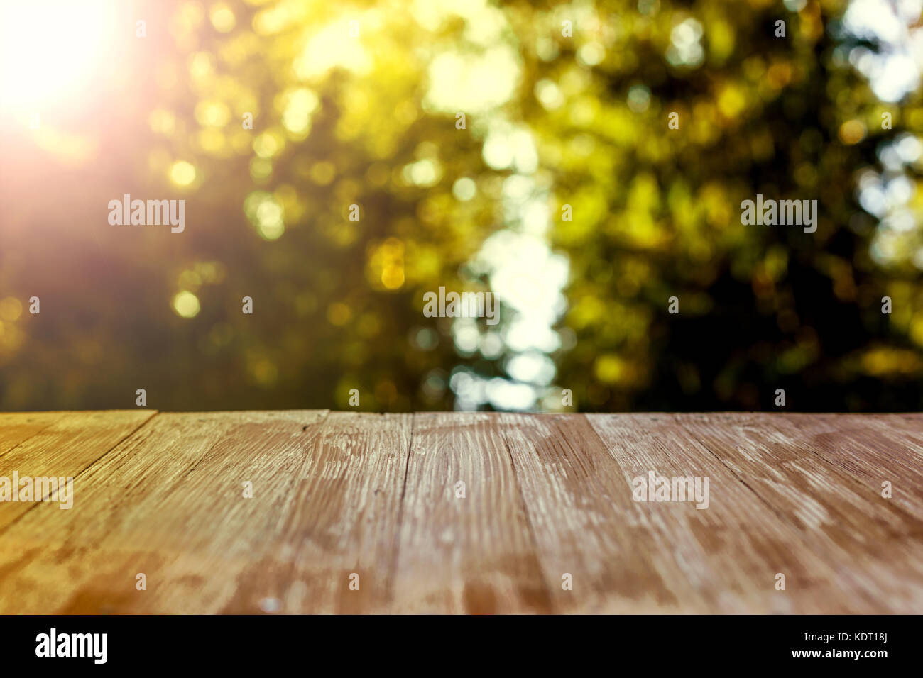Empty Rustic Wood Table Top On Blurred Forest Background At Summer Can Montage Or Display Your Products