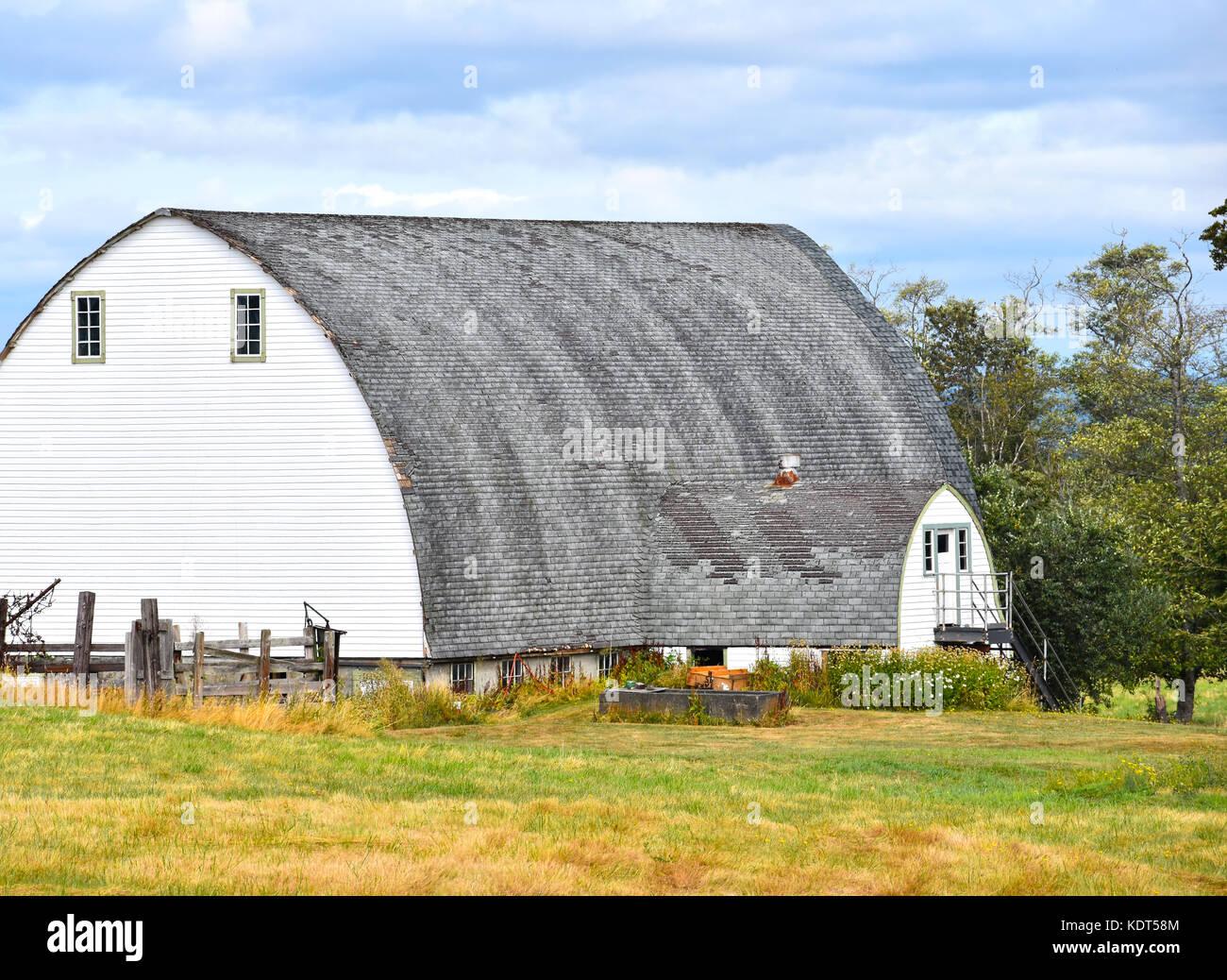 Unique White Barn in Washington State - Stock Image