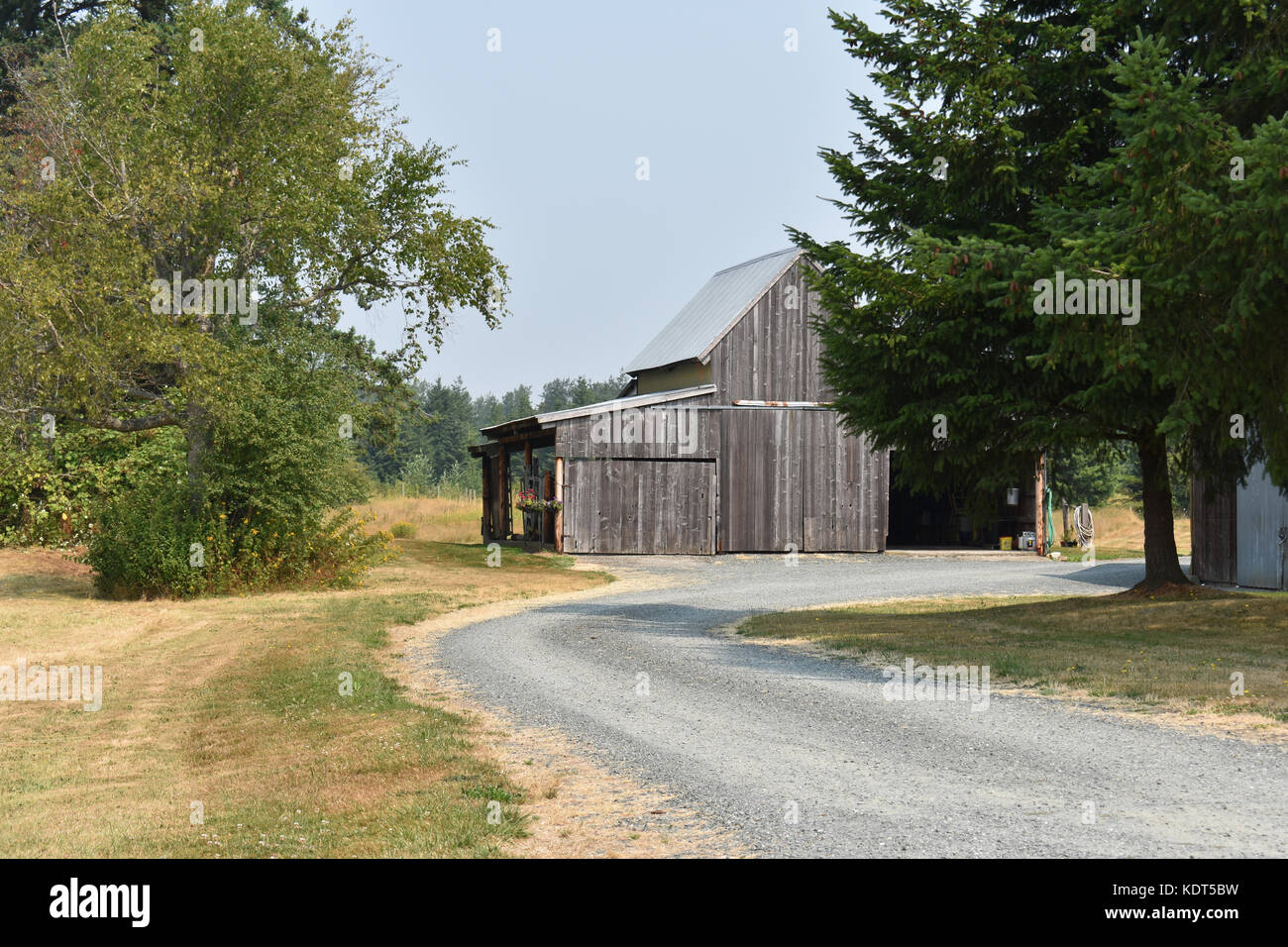 Old barn with driveway in the foreground and trees on each side. - Stock Image