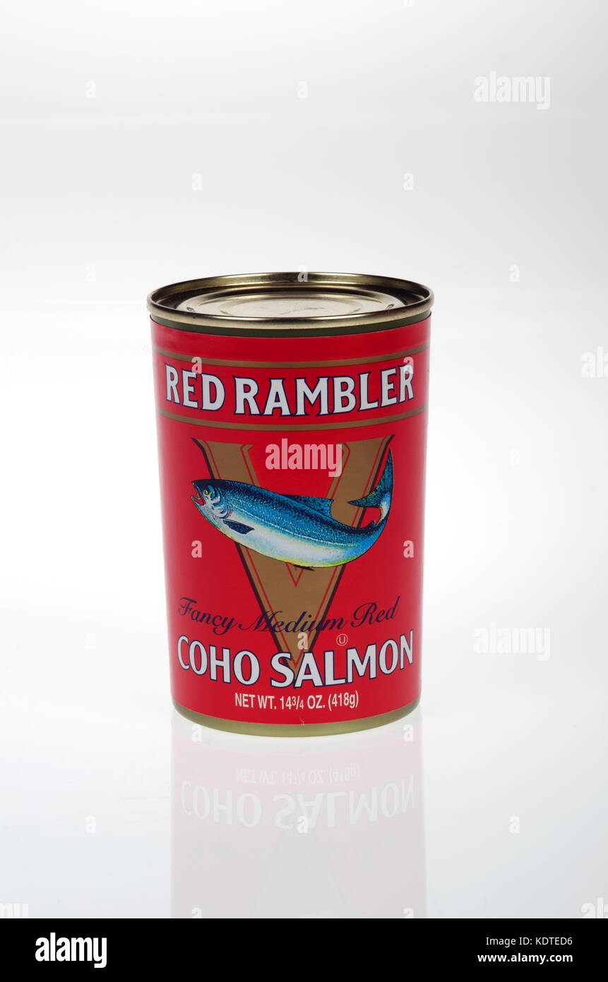 Tinned Red Rambler Coho Salmon fully cooked and ready to serve on white background, cut out USA - Stock Image