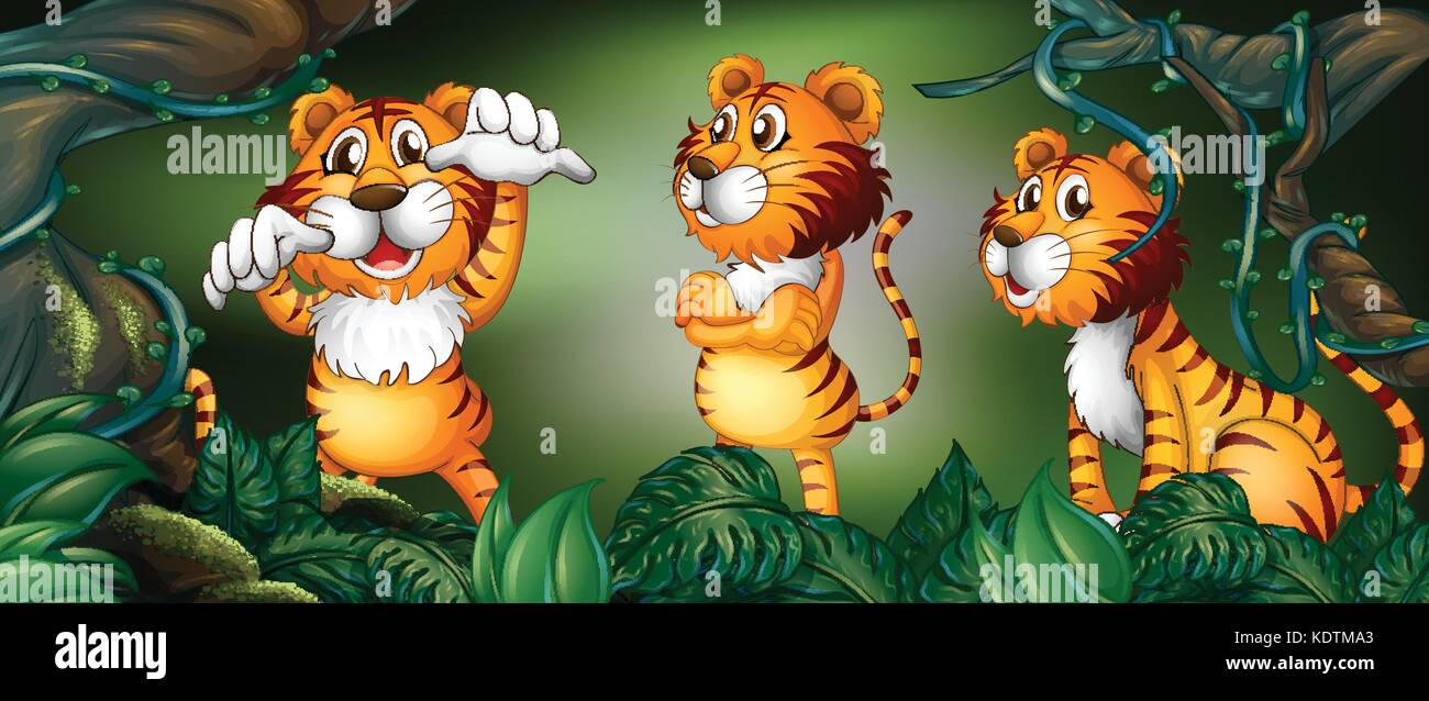 Three tigers in the rainforest illustration Stock Vector