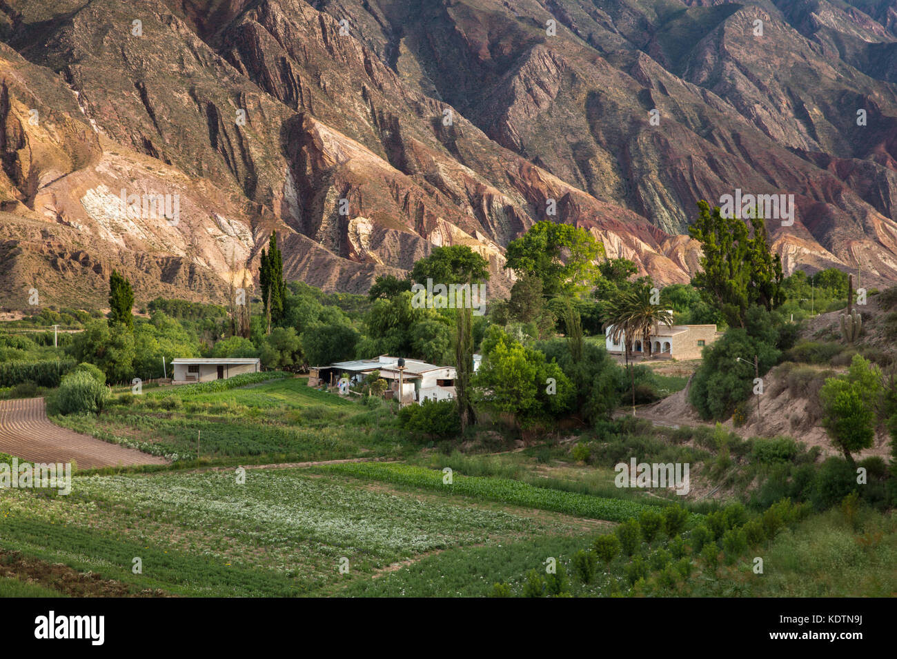 Farmland near Maimará, with the 'Painter's Palette' hills beyond, Quebrada de Humahuaca, Jujuy - Stock Image
