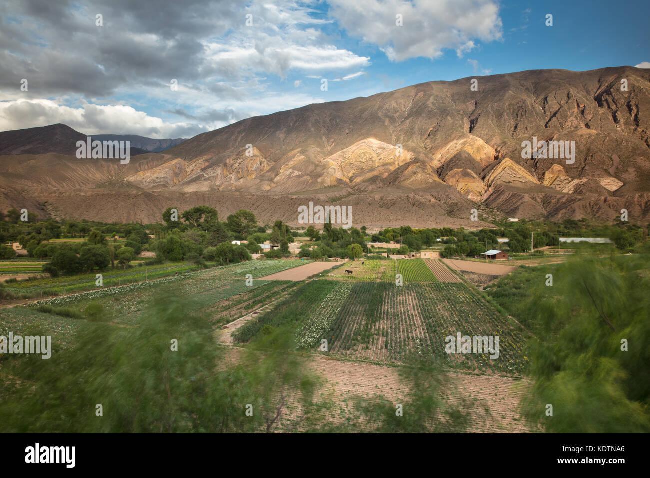 Farmland near Maimará, with the 'Painter's Palette' hills beyond, Quebrada de Humahuaca, Jujuy - Stock Image