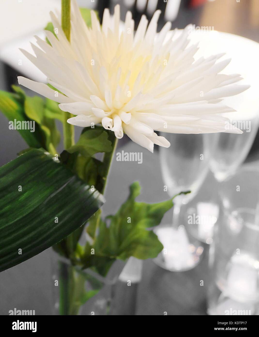 Small white chrysanthemum stock photos small white chrysanthemum pretty white artificial chrysanthemum flowers with green leaves for home and office decoration without the care mightylinksfo