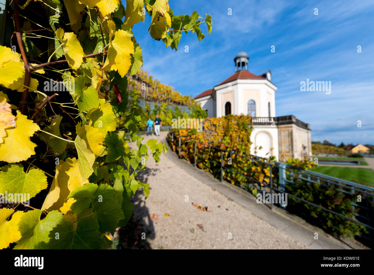Jacobstein, Germany. 12th Oct, 2017. Blue skies over a vineyard in Jacobstein, Germany, 12 October 2017. Credit: Stock Photo