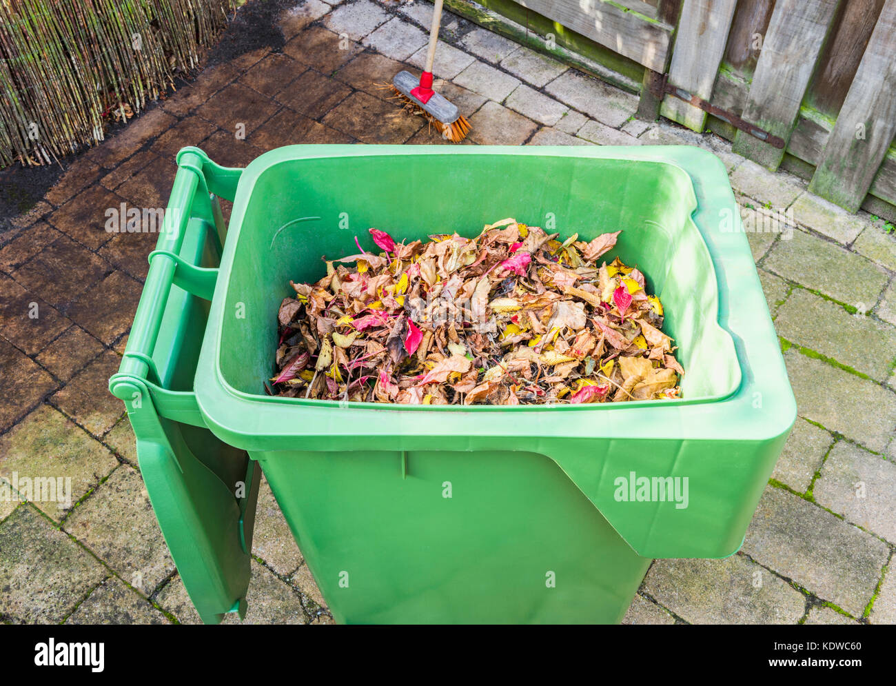 Autumn Leaves in Garbage Can in Back Yard - Stock Image