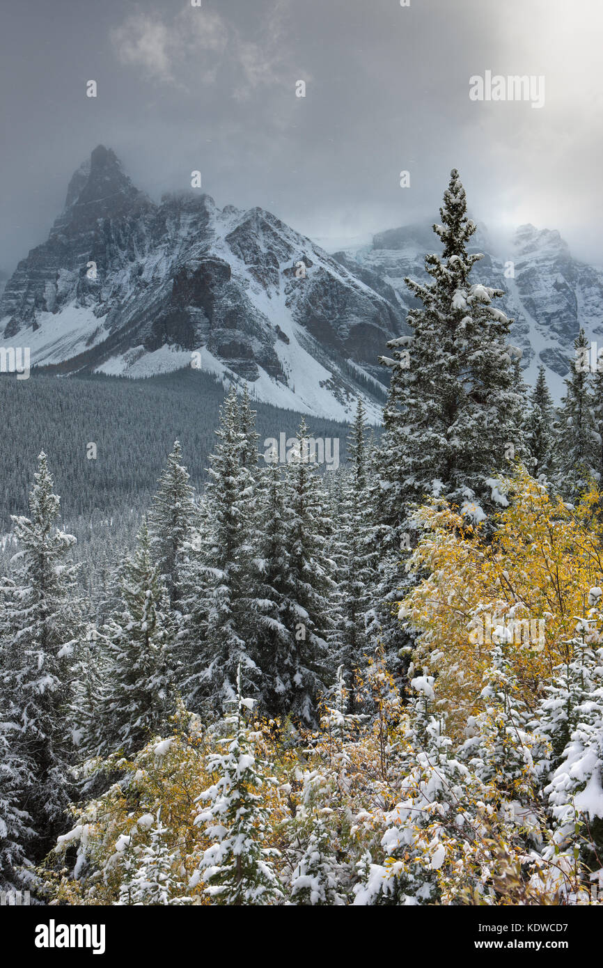 Banff first snowfall
